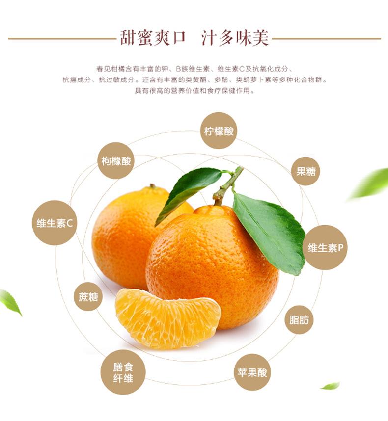 丑橘详情页04.jpg