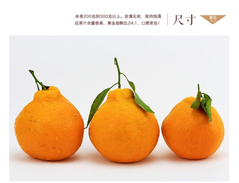 丑橘详情页06.jpg