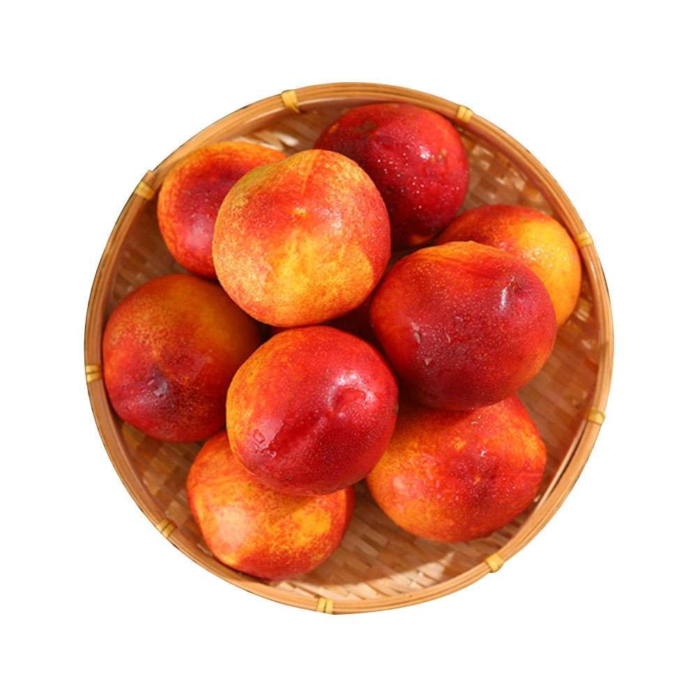 山东黄心密油桃4.5-5斤