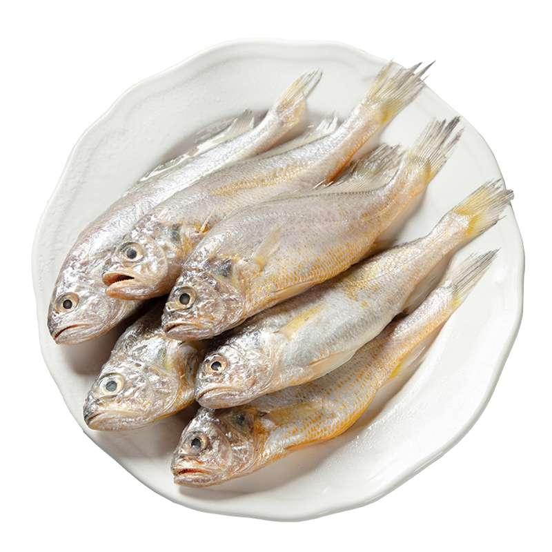 海捕小黄花鱼 生鲜烧烤食材 海鲜水产 800g