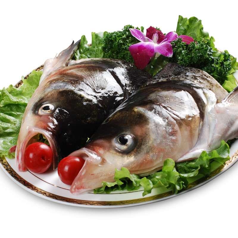 丹江口淡水鱼鲢鱼头 活杀鱼头净重700g 配酱料包调味汁140g 海鲜水产
