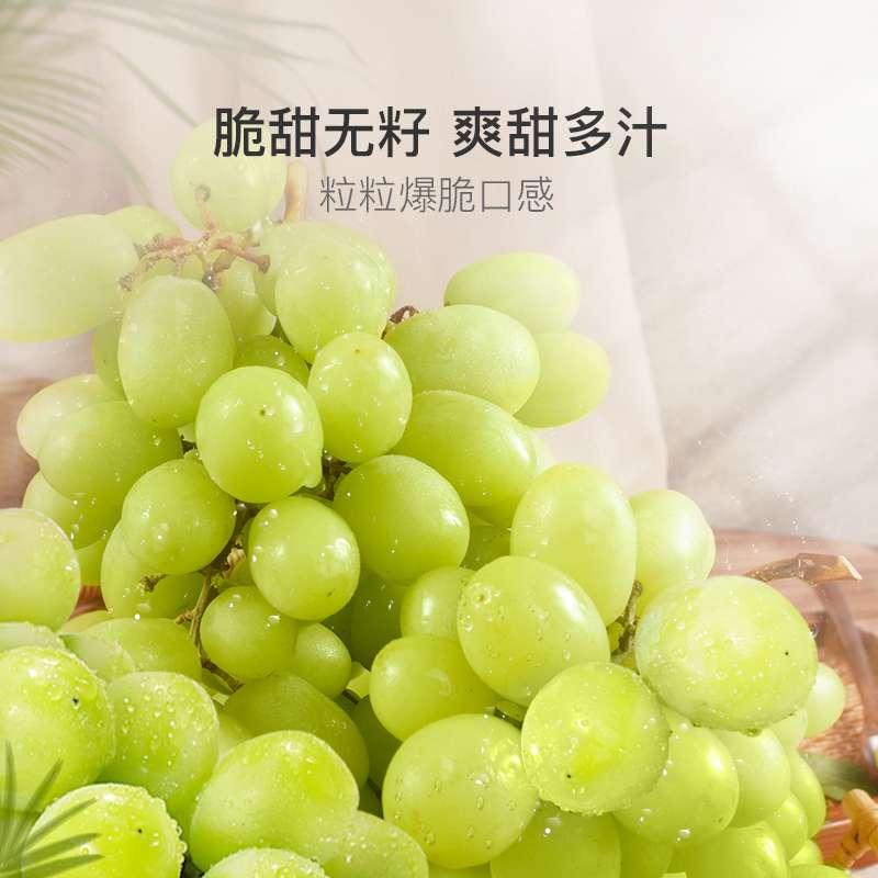【顺丰空运】秘鲁无籽青提 新鲜无籽葡萄2/3斤