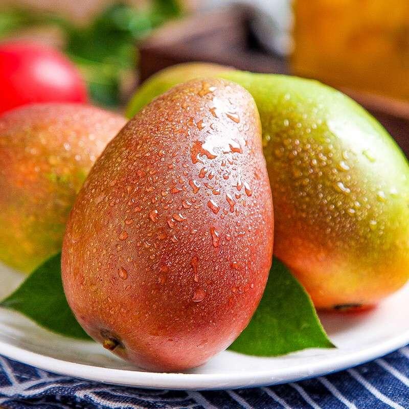 海南树上熟当季芒果 海南贵妃芒9斤 大果单果150g+