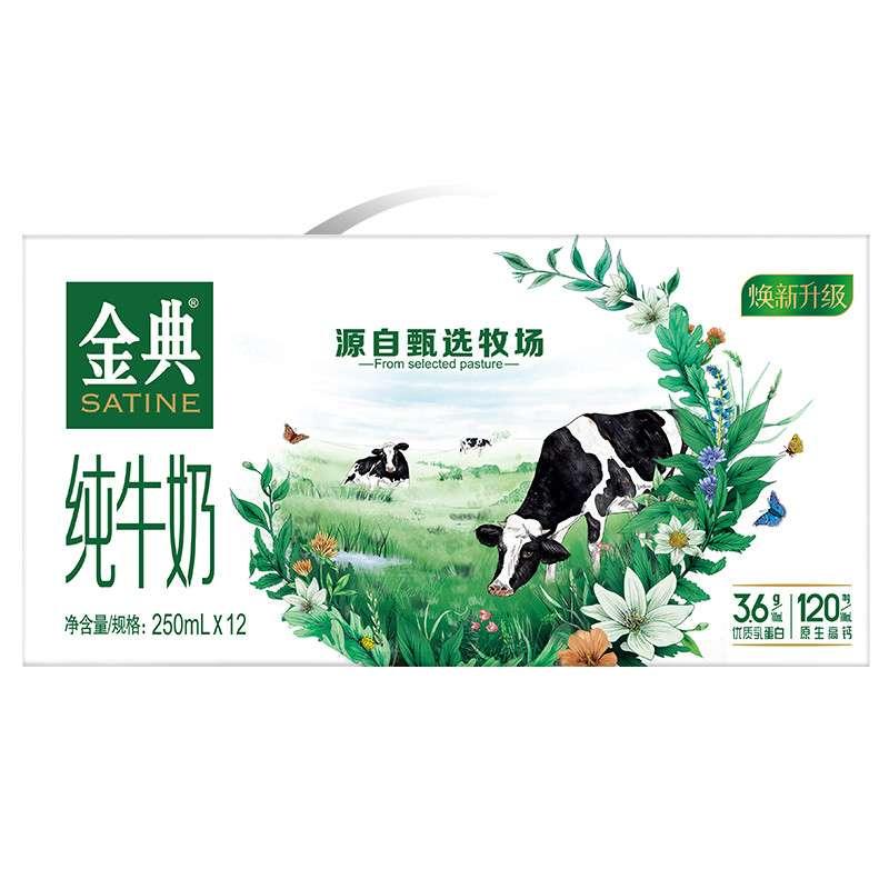 伊利 金典纯牛奶250ml*12盒  近月日期随机发
